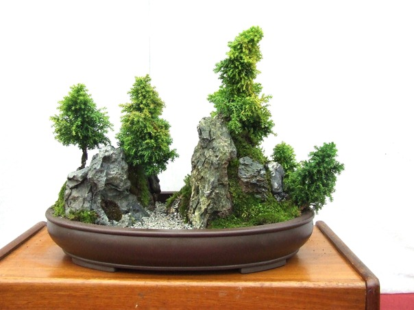 Newly Created Saikei